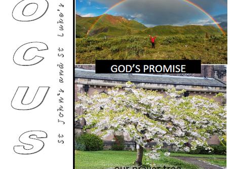 Focus Magazine - June 2020 Edition