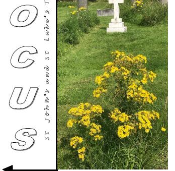Focus Magazine - September 2020 Edition