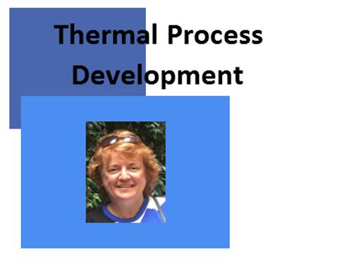 Thermal Process Development