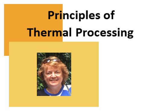 Principles of Thermal Processing