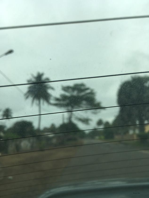 Derrière les palmiers - Gd Bassam