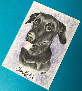 Isabella - Pet memorial colored pencil portrait