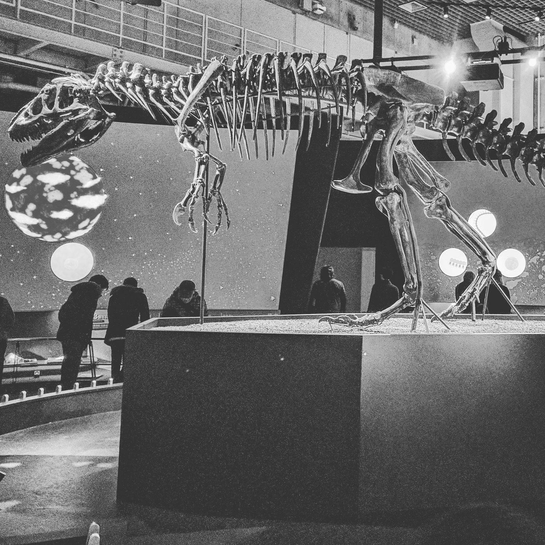 Dinosaur. Ueno, Tokyo.
