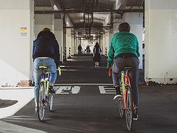 Best Tokyo road bike tours: DIG Tokyo Tours