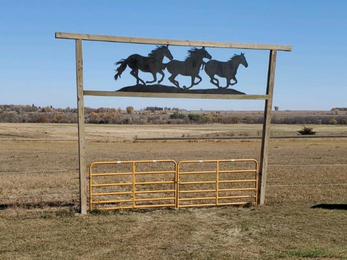 Steel Horse Art