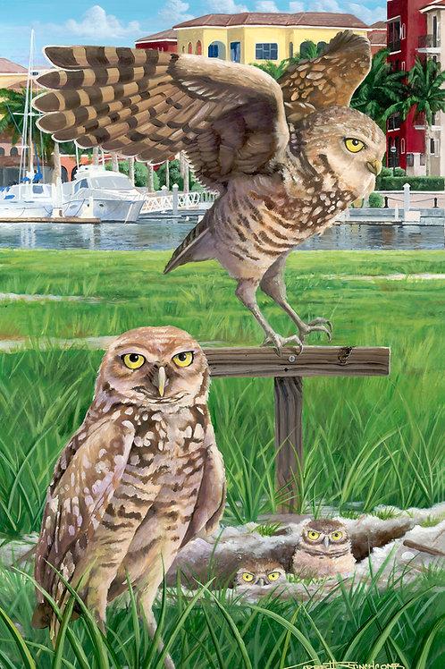 """""""Esplanade Owls"""""""