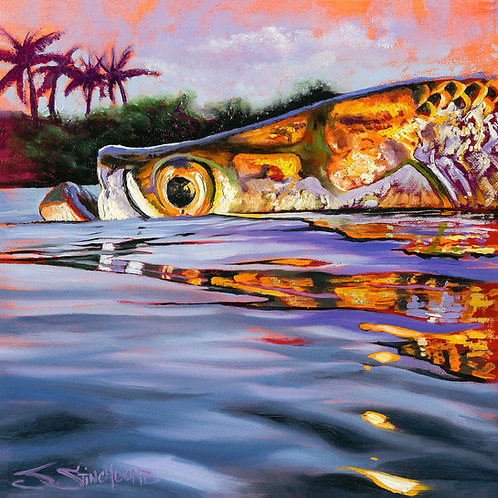 """SUNSET TARPON"""
