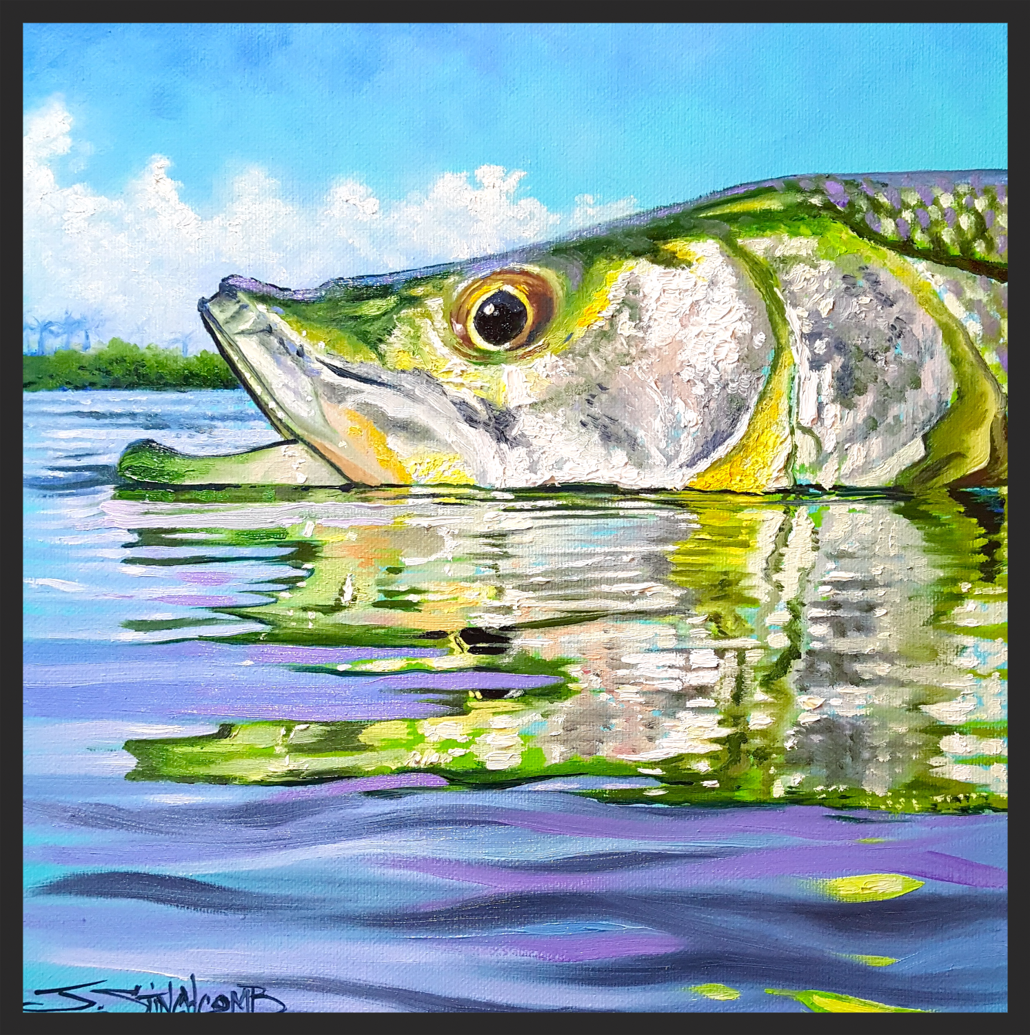 """Afternoon snook"" 2/3 series"