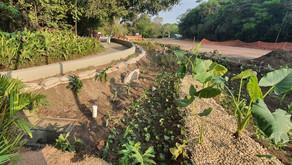 Iniciativa contra enchentes, jardins de chuva são concluídos em BH e Contagem