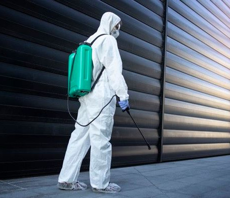 Our Top 6 Pest Prevention Tips and Tricks to Keep Pests Away