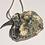 Thumbnail: Zeelandmuschelanhänger mit Silberkette