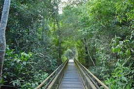 Iguazu Falls Argentina Tours