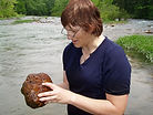 Invertebrate Identification, Stephanie A. Clark, macroinvertebrate surveys, snails, mussels, gastropods