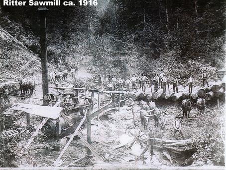 Giant Lumber Company Update