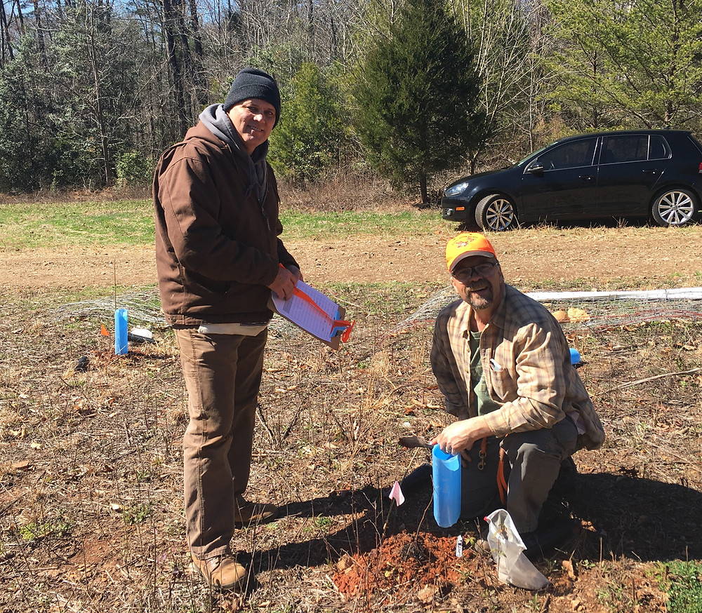 Bradley Fox (left) of Taylorsville and Fred Clodfelter (right) of Greensboro planting seedlings.