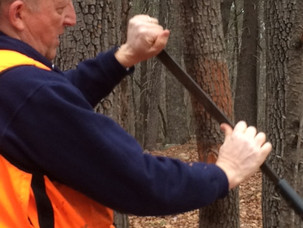 Painting Property Lines – Part Two