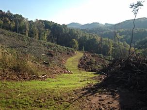 Pre-Harvest Planning - Roads