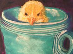 Cuppa Chick
