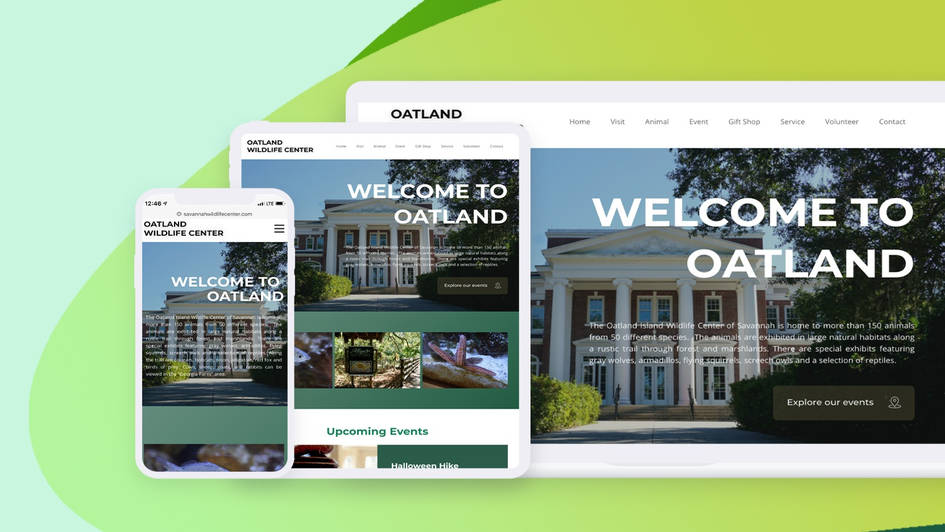OIWC Web Optimization
