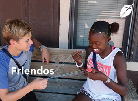 How to make Friendos