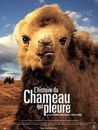 Histoire du chameau qui pleure.jpg