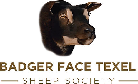 Badger Face Dark Gold.jpg