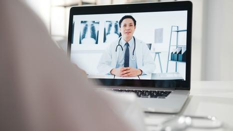 O crescimento da telemedicina veterinária é uma tendência perigosa?