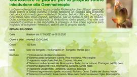 Corso di formazione: conoscere le piante per la propria salute - Introduzione alla Gemmoterapia