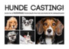 HundeCasting_Version_3_2.jpg