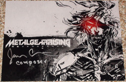 Metal Gear Rising - Christopherson