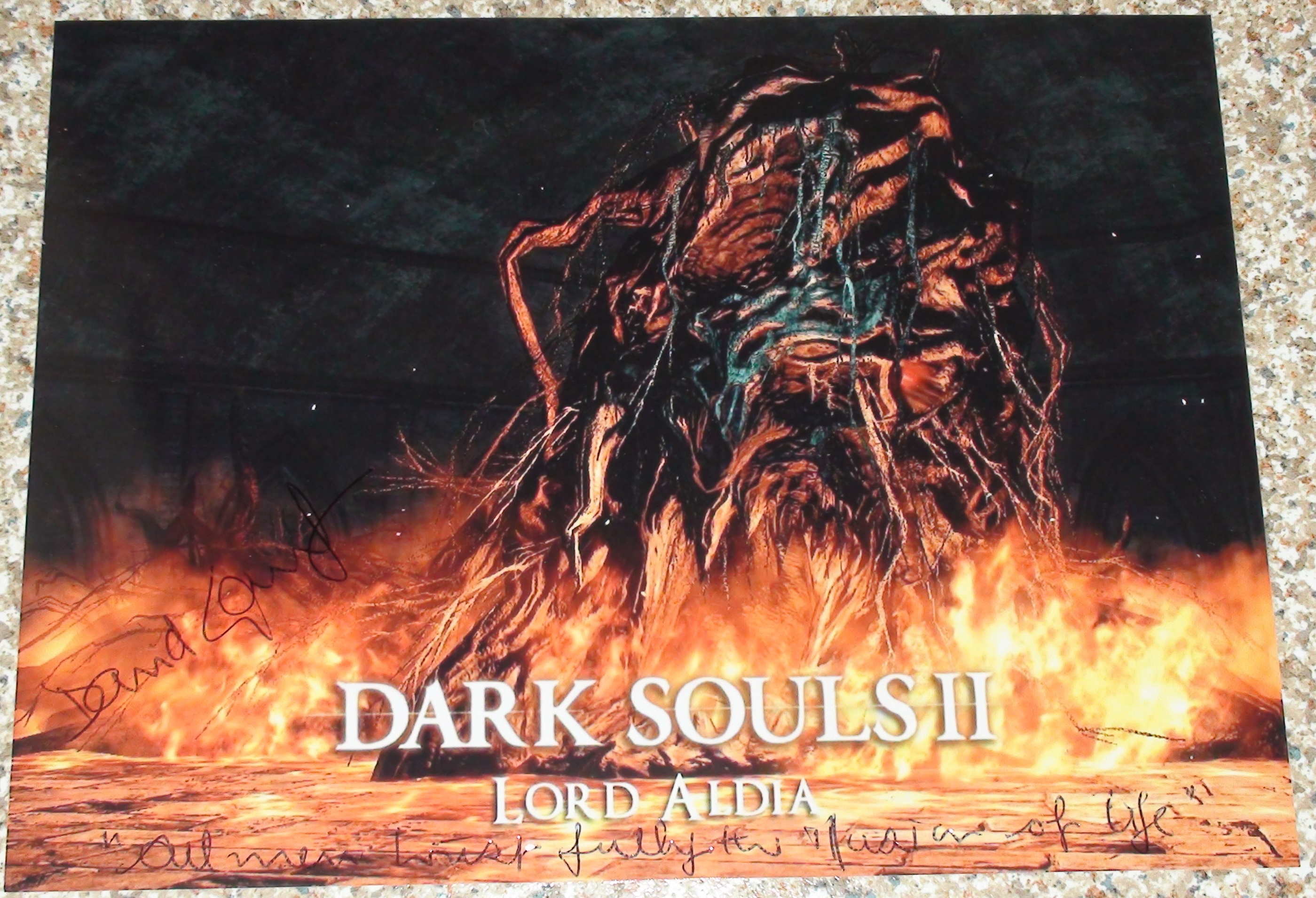 Dark Souls 2 - David Gant