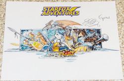 StarFox Adventures - Estelle Ellis