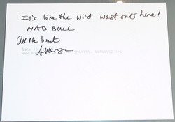 Mad Bull 34 - Allan Wenger (2/2)