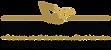PFO Logo-transparent-web.png