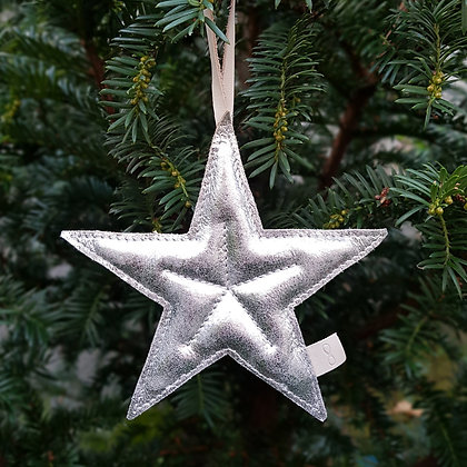 Kerstster zilver