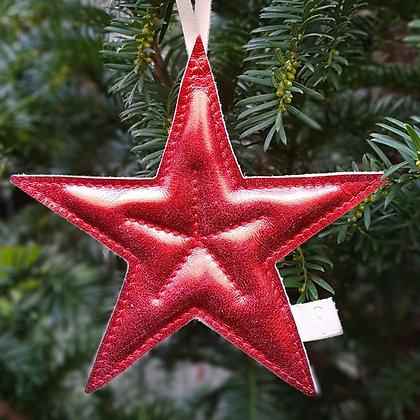 Kerstster rood