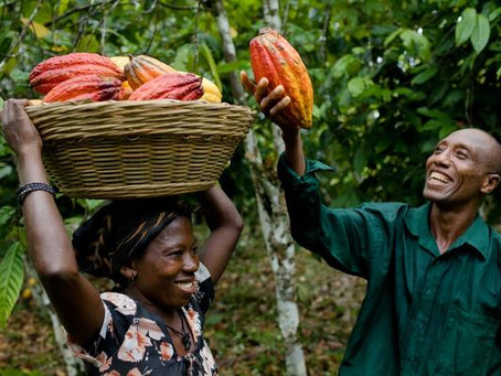 NUGS-RUSSIA APPLAUDS FARMERS ON THE OCCASION OF THE NATIONAL FARMERS DAY.