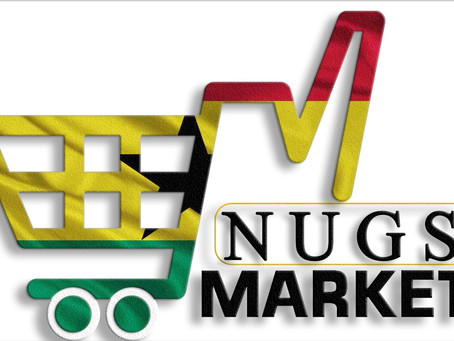 INTRODUCTION OF NUGS MARKET