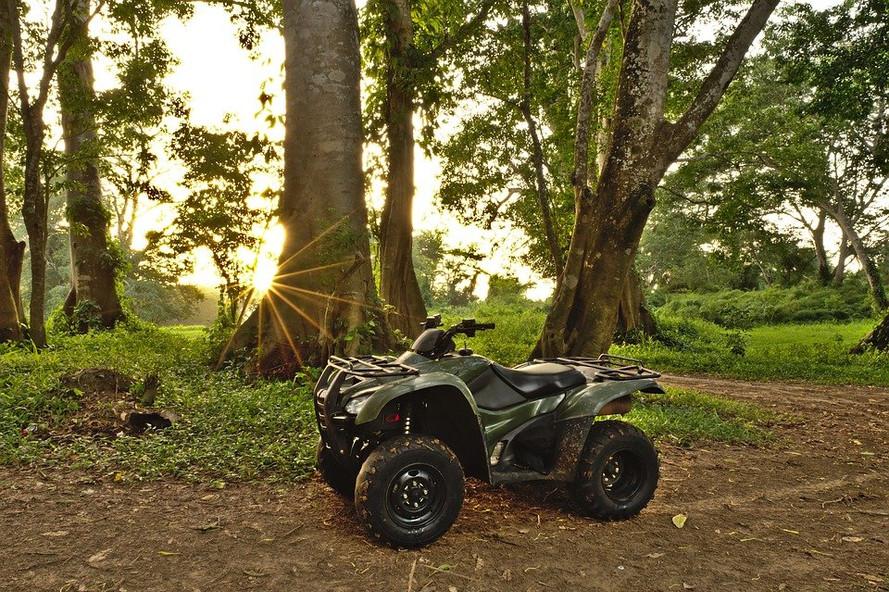 ATV DD.jpg
