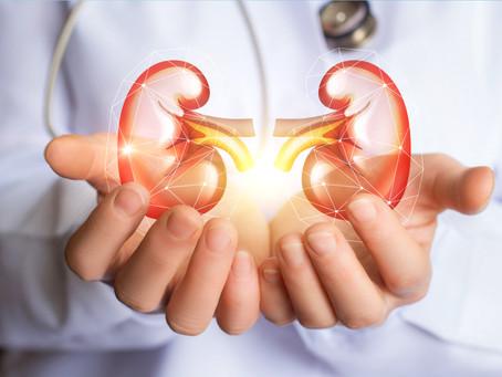 Rigenerazione del rene e del cuore diabetico