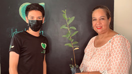 Programa Forestación