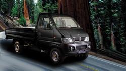 Light/Mini-Truck