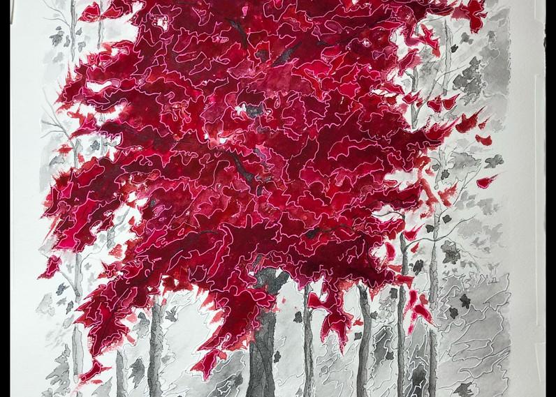 Crimson Lake.jpg