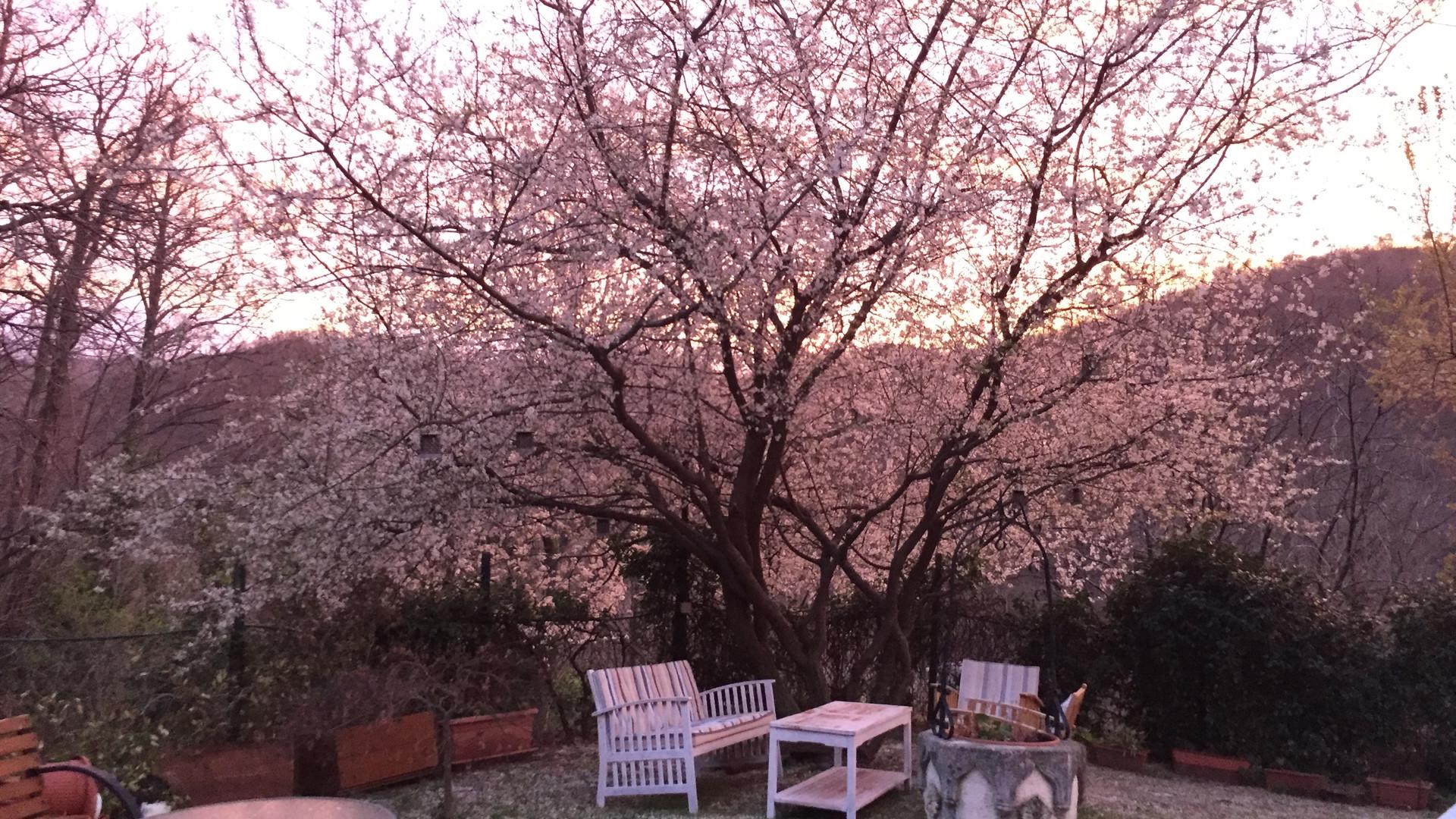 Tramonto di primavera