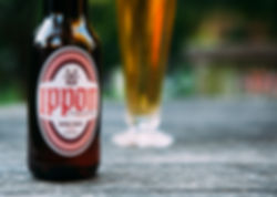 bière Ippon, bière d'inspiration japonaise aromatisée de gingembre et poivre sansho, brassée à Montréal | Ippon beer, craft ginger beer brewed in Montreal, Quebec