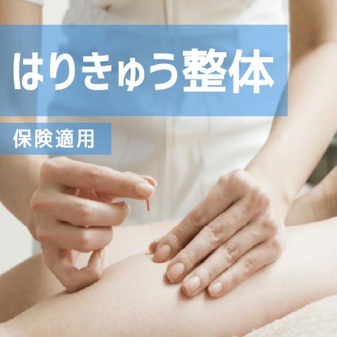 整体/はりきゅうコース紹介画像.png