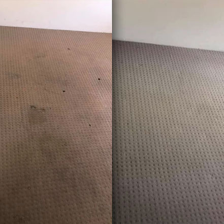 Before and After (Carpet).jpg
