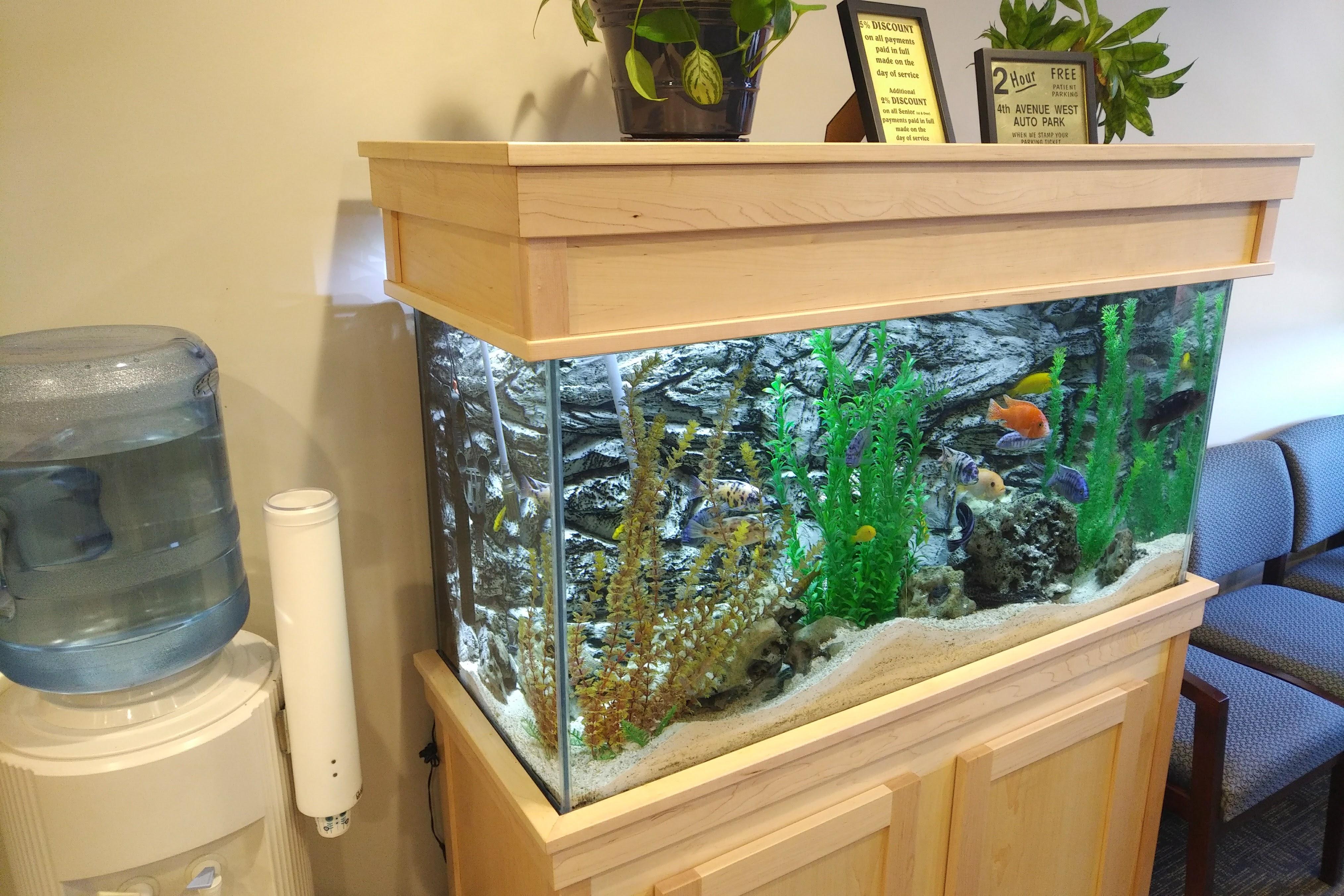 fish_tank_2