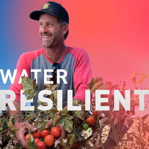 Water Resilient
