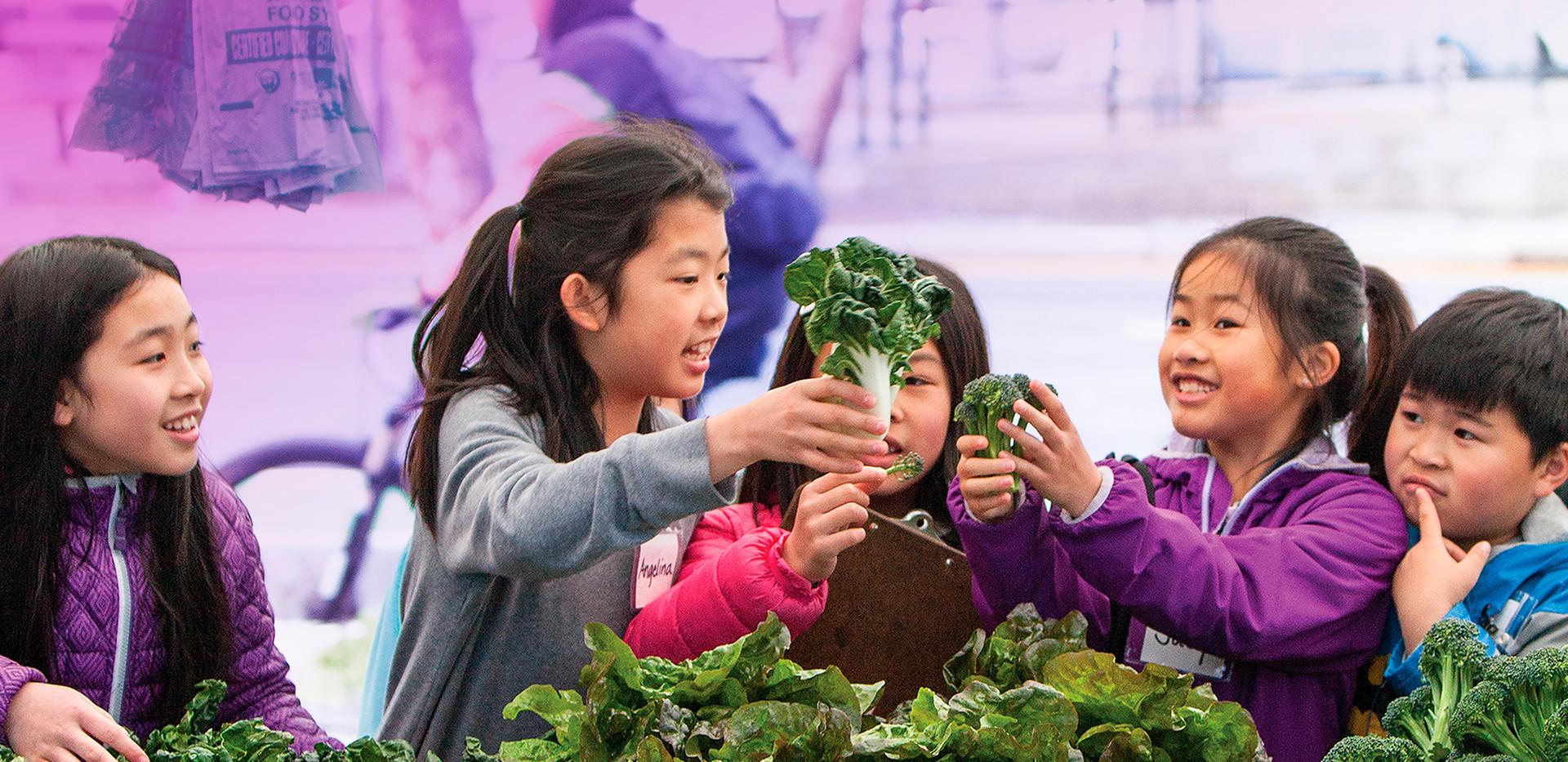 The Food Change: Fresh Knowledge